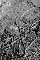 Финикиянин, изображенный в приветственной позе. Барельеф из северного входа Северо-западного дворца, IX век до н. э. Нимруд. Британский музей, Лондон. У знатного финикиянина на голове коническая тиара, он богато украшен драгоценностями: серьгами, колье и браслетами на обеих руках.